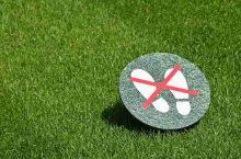 How Long Should You Stay Off Grass After Pesticide?